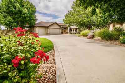 Grand Junction Single Family Home For Sale: 3515 Hollow Court