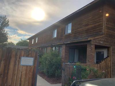 Condo/Townhouse For Sale: 547 Pearce Avenue #3