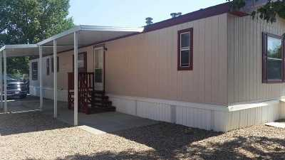 Single Family Home For Sale: 515 Friendship Drive