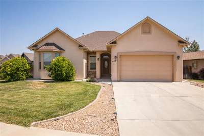 Fruita CO Single Family Home For Sale: $325,000