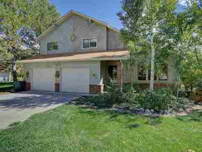 Grand Junction Single Family Home For Sale: 412 Ridgeway Drive