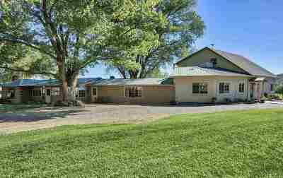 Grand Junction CO Single Family Home For Sale: $1,189,000