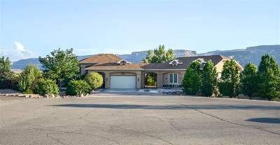 Fruita Single Family Home For Sale: 1950 Timber Falls Drive