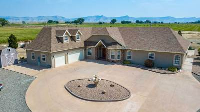 Fruita Single Family Home For Sale: 1426 19 Road
