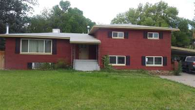 Single Family Home For Sale: 502 Blevins Road