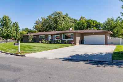 Grand Junction Single Family Home For Sale: 702 Putter Drive