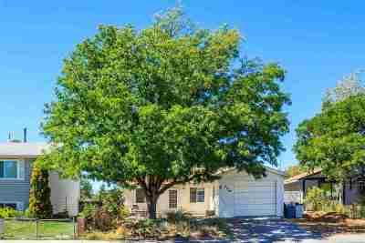 Single Family Home For Sale: 529 Sara Lane