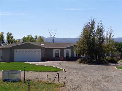 Fruita Single Family Home For Sale: 1679 L Road