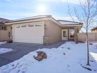Single Family Home For Sale: 2841 Trevor Mesa Drive