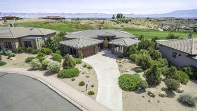 Grand Junction Single Family Home For Sale: 340 Iron Horse Court
