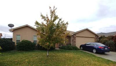 Grand Junction Single Family Home For Sale: 3167 Cross Canyon Lane