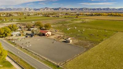 Fruita Single Family Home For Sale: 1064 19 1/2 Road