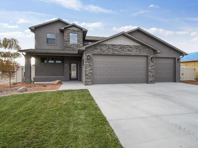 Fruita Single Family Home For Sale: 1105 Aspen Village Lp