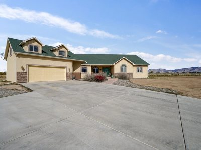 Fruita Single Family Home For Sale: 1920 M Road