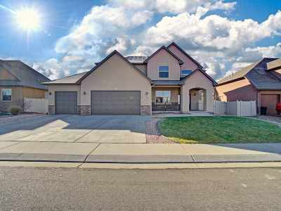 Fruita Single Family Home For Sale: 1460 Catalina Avenue