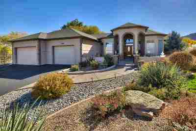 Grand Junction Single Family Home For Sale: 687 Curecanti Circle
