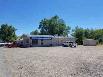 Commercial For Sale: 757 1/2 Highway 50
