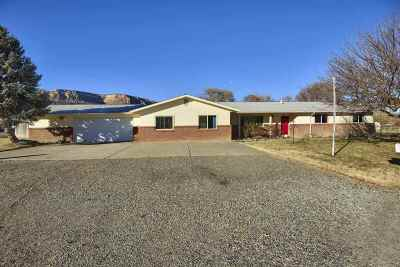 Grand Junction Single Family Home For Sale: 2186 McKinley Drive