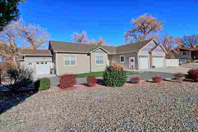 Grand Junction Single Family Home For Sale: 2245 Idella Court