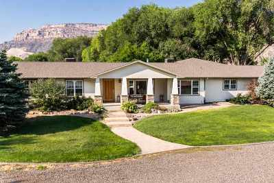 Grand Junction Single Family Home For Sale: 2085 S Broadway