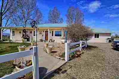 Fruita Single Family Home For Sale: 1453 18 Road