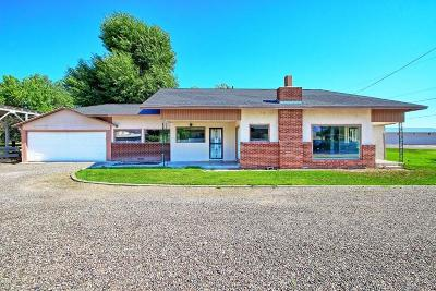 Fruita Single Family Home For Sale: 953 17 1/4 Road