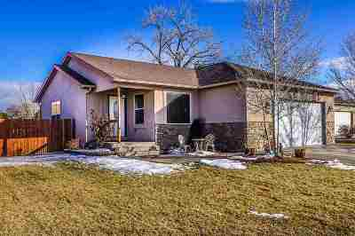 Fruita Single Family Home For Sale: 380 Vista Valley Drive
