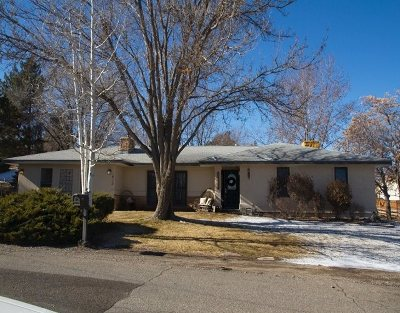 Grand Junction Single Family Home For Sale: 413 E Mayfield Drive