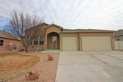 Grand Junction CO Single Family Home For Sale: $449,900