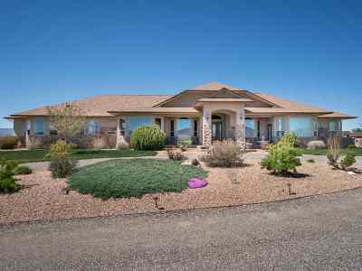 Fruita Single Family Home For Sale: 1407 Bridle Path Court