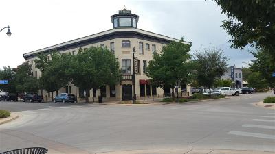 Grand Junction Commercial For Sale: 359 Colorado Avenue #102, 103