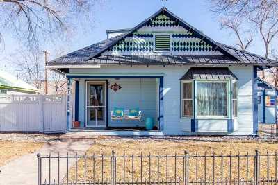 Palisade Single Family Home For Sale: 573 Main Street