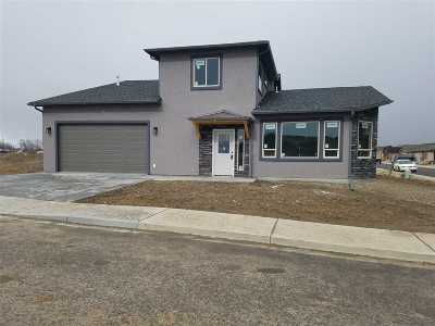 Single Family Home For Sale: 2948 Ozark Avenue
