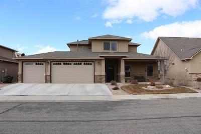 Single Family Home For Sale: 613 Silverado Drive