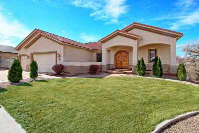 Grand Junction Single Family Home For Sale: 727 Beaver Lodge Lane