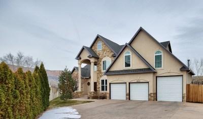 Single Family Home For Sale: 2216 Da Vinci Place