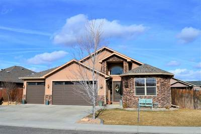 Fruita CO Single Family Home For Sale: $339,000