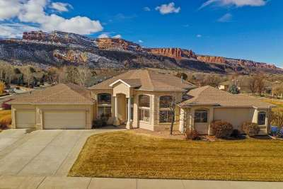 Grand Junction Single Family Home For Sale: 391 Talus Lane