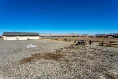 Commercial For Sale: 2922 D Road