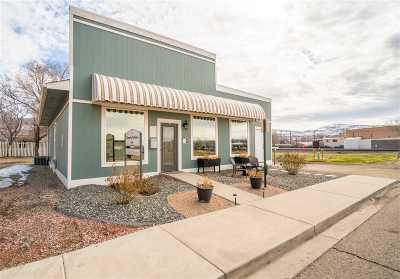 Palisade Commercial For Sale: 117 S Main Street