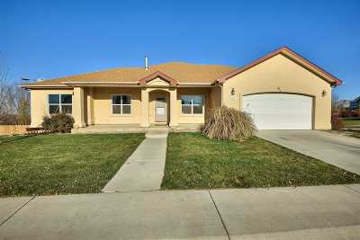 Single Family Home For Sale: 891 Baywood Court