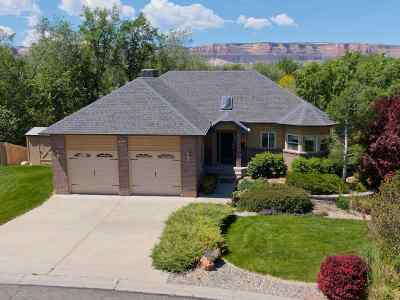 Grand Junction Single Family Home For Sale: 539 Ridgestone Court