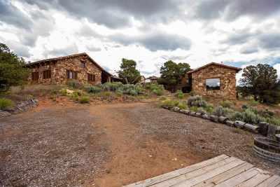 Single Family Home For Sale: 430 Canyon Ridge Drive
