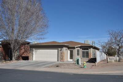Grand Junction CO Single Family Home For Sale: $260,000