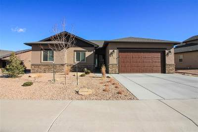 Grand Junction Single Family Home For Sale: 210 Hideaway Lane