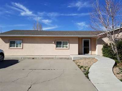 Grand Junction Single Family Home For Sale: 3198 Jamison Avenue