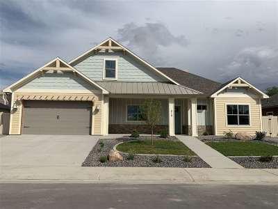 Grand Junction Single Family Home For Sale: 818 Apple Glen Drive