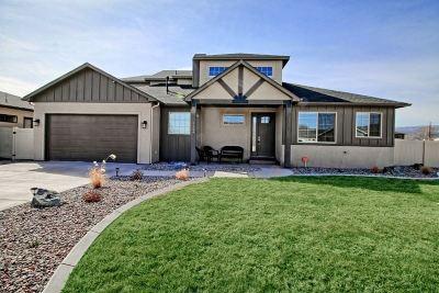 Fruita Single Family Home For Sale: 1124 Aspen Village Lp