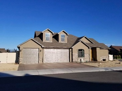Single Family Home For Sale: 2497 Solstice Ln