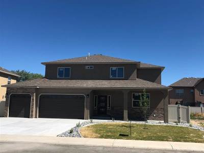 Fruita Single Family Home For Sale: 1431 Satterfield Avenue